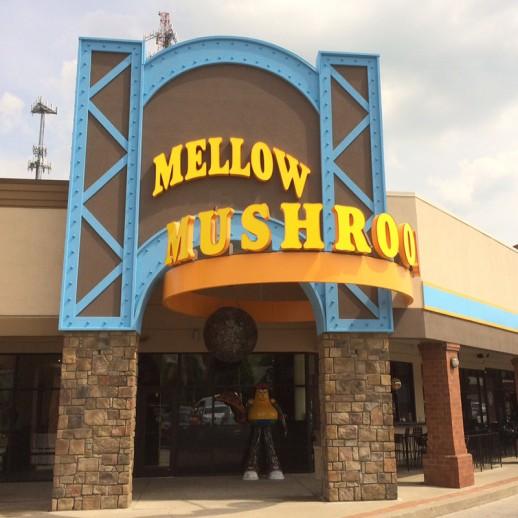**CL_1 Mellow Mushroom_A_800x800